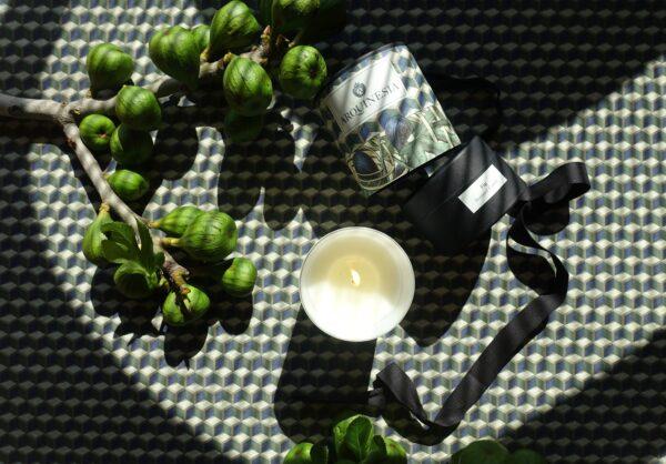 Arquinesia fig Candle